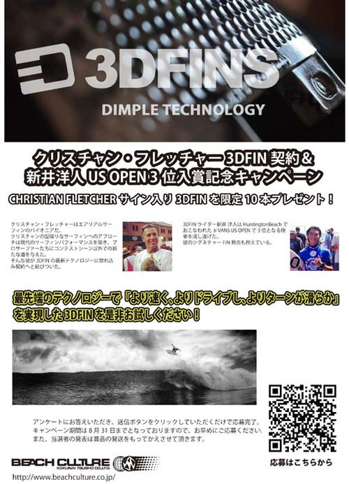 3dfins_campaign